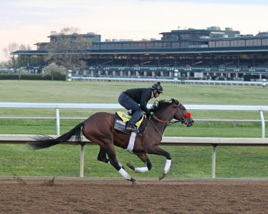 Nyquist breezing at Keeneland on April 15th, 2016 - Coady Photography/Keeneland Photo