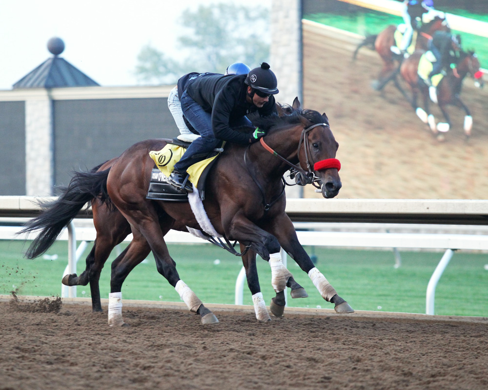 Nyquist Posts Penultimate Derby Workout at Keeneland