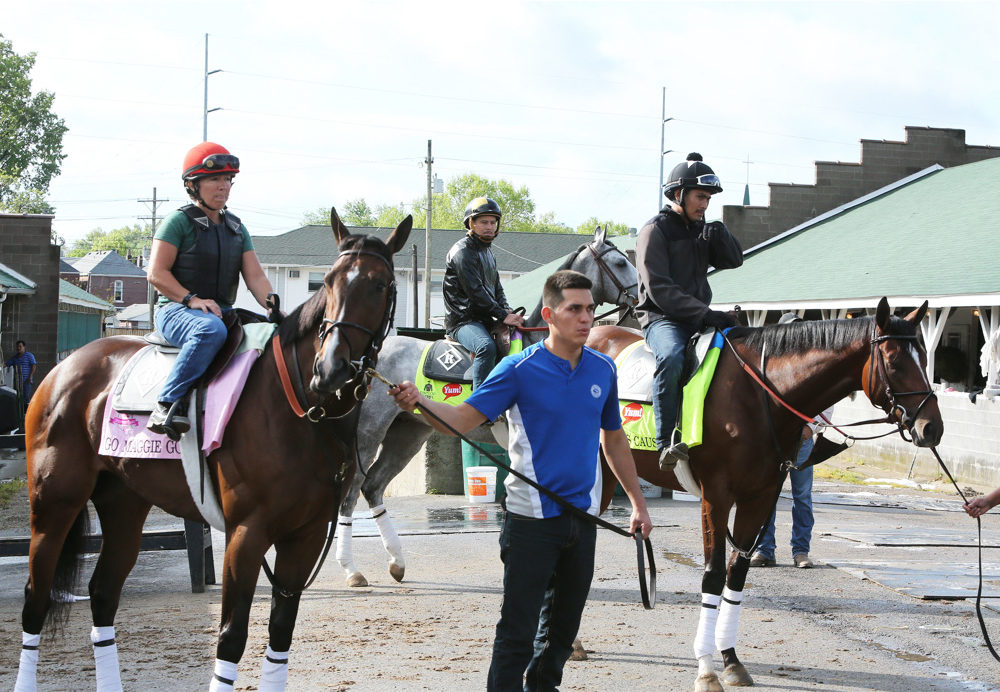 The Morning at Churchill in Videos, 4-28-16