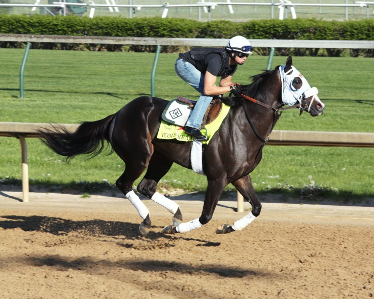 Tom's Ready galloping at Churchill Downs - Coady Photography/Churchill Downs