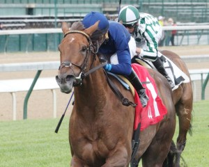 Acapulco winning the Unbridled Sidney Stakes at Churchill Downs - Coady Photography