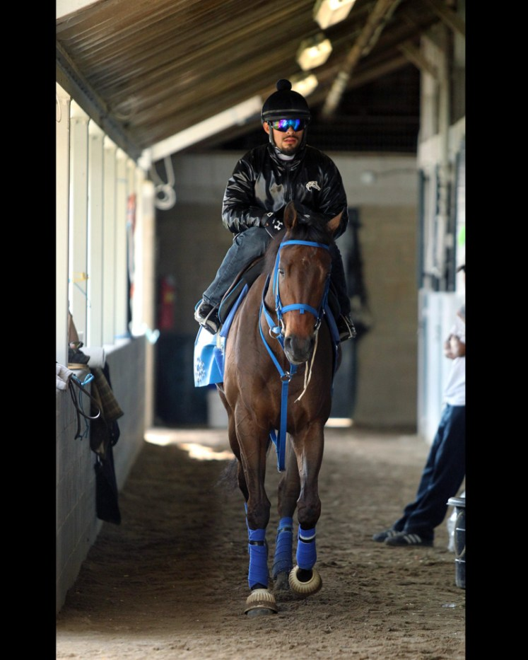 Cathryn Sophia at Keeneland - Coady Photography/Keeneland Photo