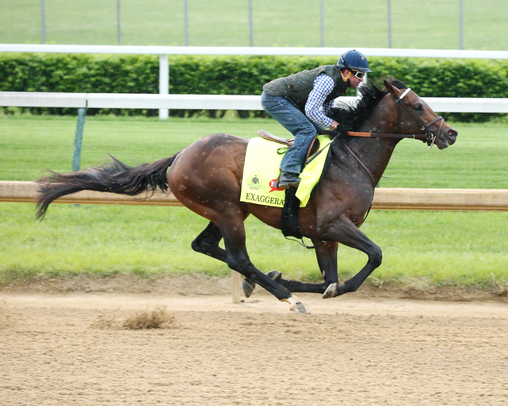 Exaggerator Breezes at Churchill in Final Derby Workout