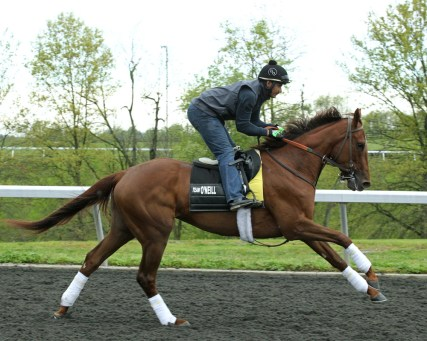 Land Over Sea at Keeneland - Coady Photography/Keeneland Photo