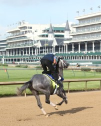 Mohaymen galloping at Churchill Downs - Coady Photography