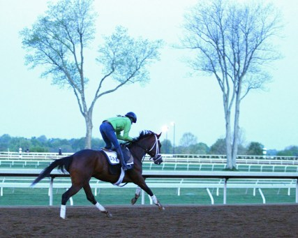 Rachel's Valentina training at Keeneland - Coady Photography/Keeneland Photo