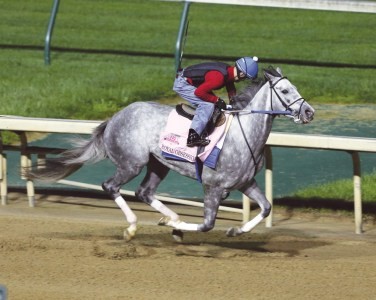 Royal Obsession at Churchill Downs - Coady Photography