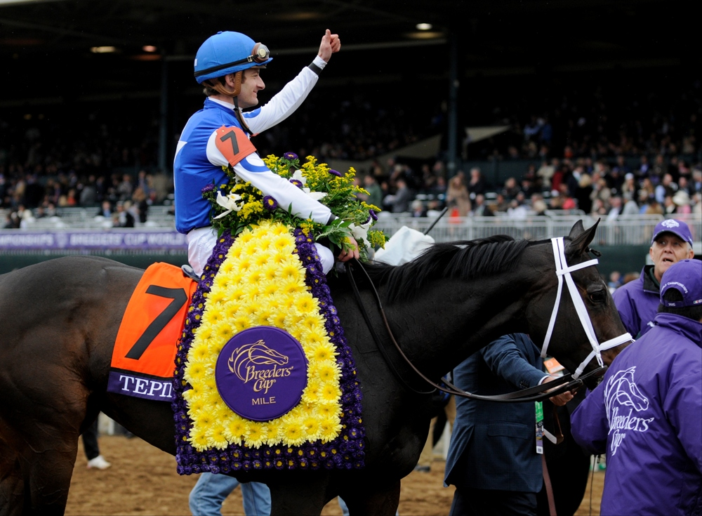 2016 Breeders Cup Mile Pre Entries The Turf Board