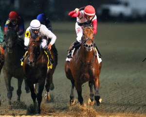 Bradester winning the Stephen Foster Handicap (gr. I) at Churchill Downs - Coady Photography