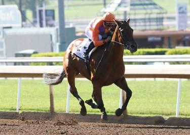 Spendthrift Farm's Beholder and jockey Gary Stevens win the Grade I, $400,000 Vanity Mile, Saturday, June 4, 2016 at Santa Anita Park, Arcadia CA. © BENOIT PHOTO
