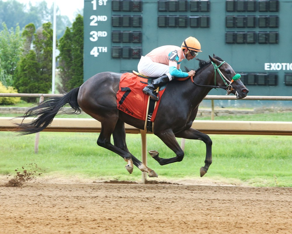Ivy's College Fund Romps in First 2yo Race of Ellis Park Meet