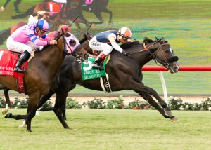 Midnight Storm holds off a late run from Ashleyluvssugar to win the Eddie Read Stakes (gr. II) at Del Mar - © BENOIT PHOTO