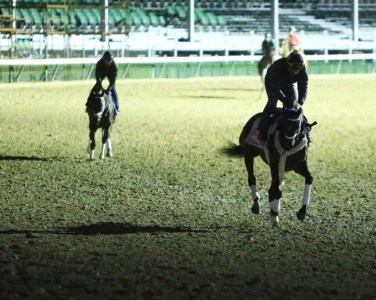Farrell galloping at Churchill Downs - Coady Photography