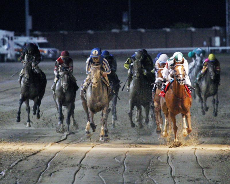 McPeek Seeks Another Sweep in Ellis Juvenile, Debutante