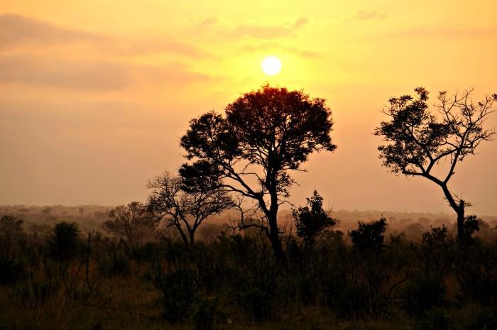 Africa 867