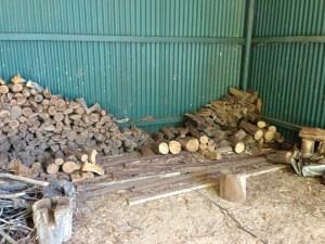 Who's Controlling Your Appointment Schedule? Five Lessons From the Woodpile….