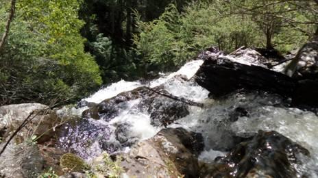 Yarra Falls