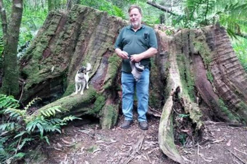 Ada Tree Rainforest Walk near Noojee