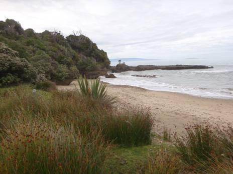 Blowhole's Beach Camp