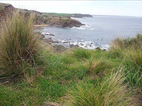 George Bass Coastal Walk