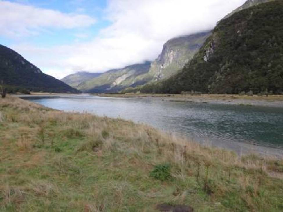 Wilkin River, view downstream.