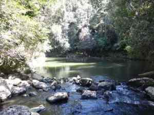 Moho Creek Crater: A lovely short walk.