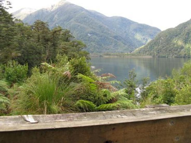 View from verandah Supper Cove Hut
