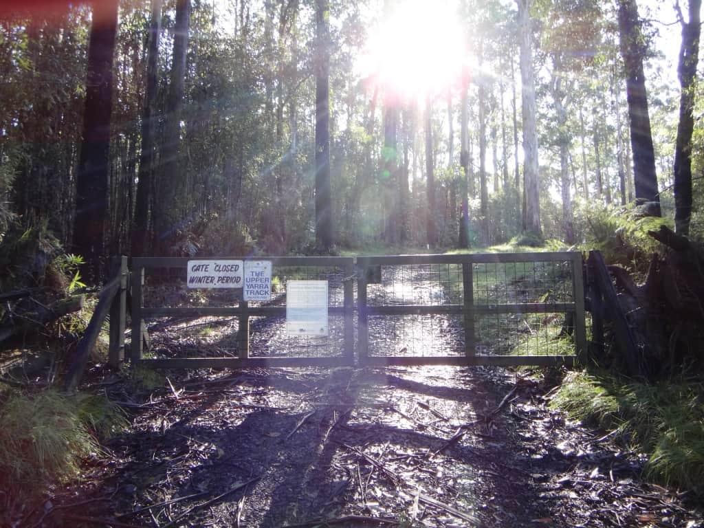 Upper Yarra Track – Winter Update: