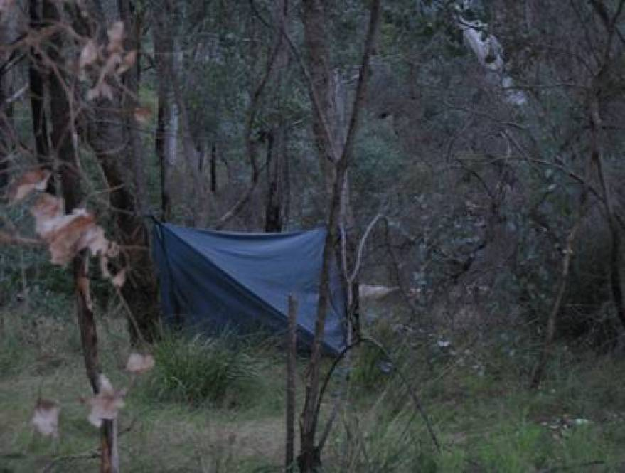 Hammock camp Mt Darling Creek 2008/09/21: Large storm tarp shown (unnecessary even for Fiordland, but VERY dry)