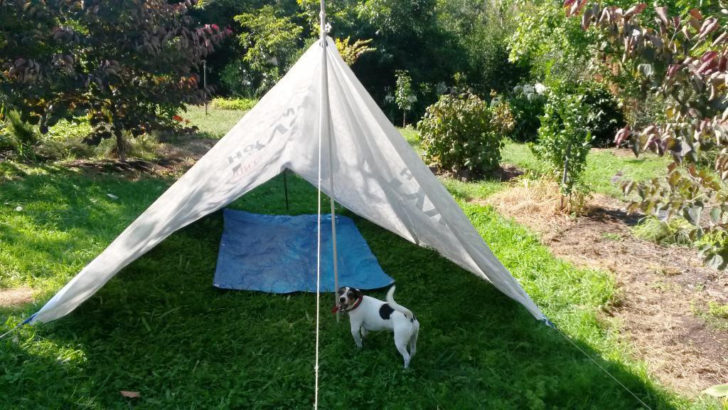 New Tyvek 'Forester' Tent Design: