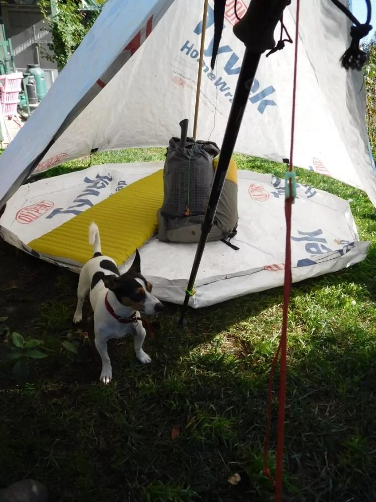 New Decagon Octagon Tyvek Igloo Tent Design: