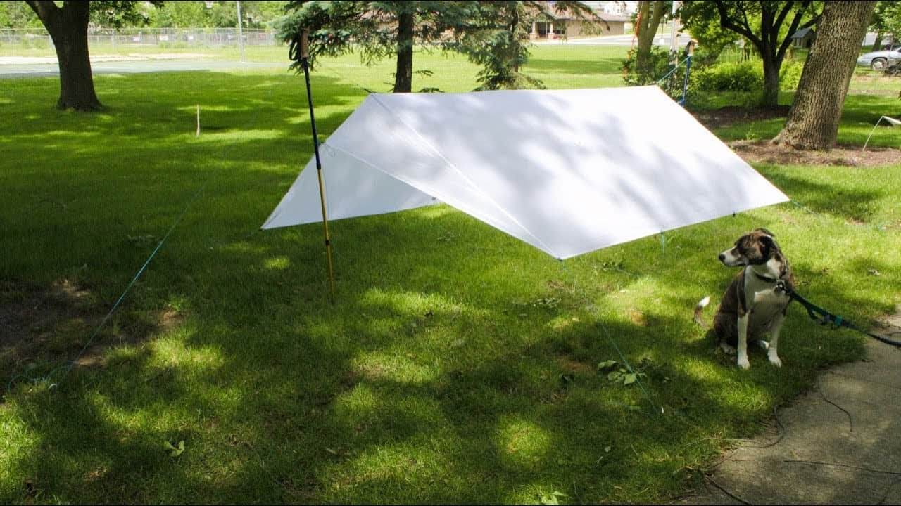 All You Ever Need to Know About Tarps:
