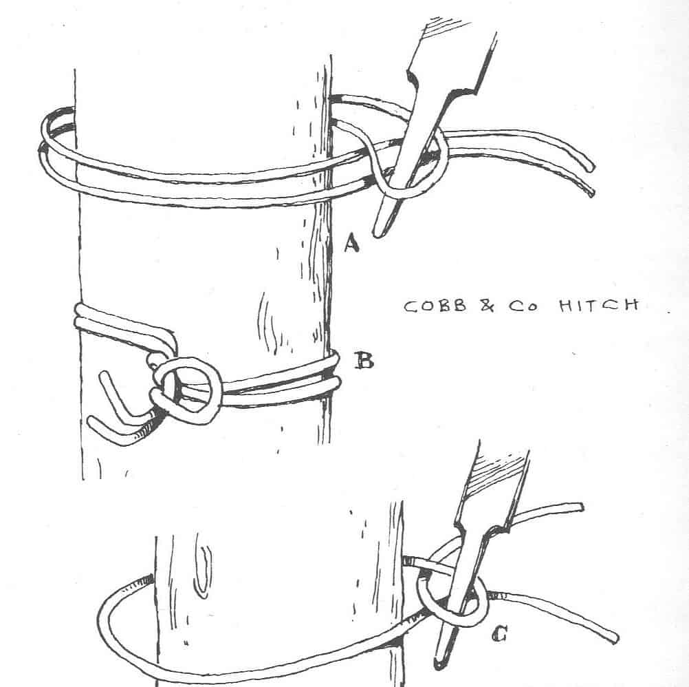 Wire Tricks: Cobb and Co Hitch