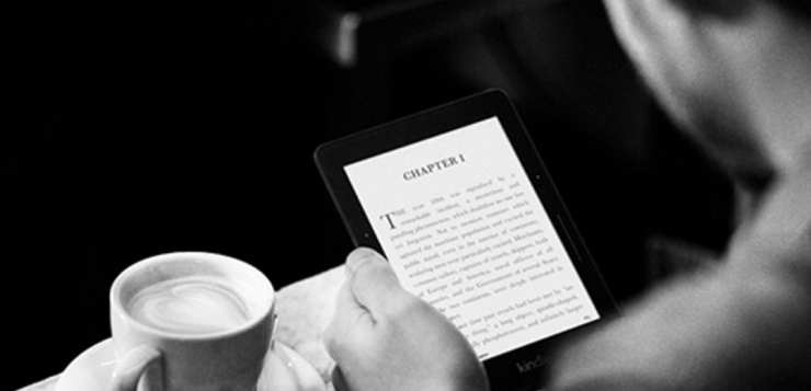 Kindle Voyage India Price