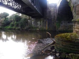 The rail bridge