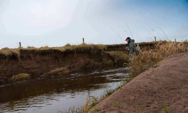 The Fog of Fishing
