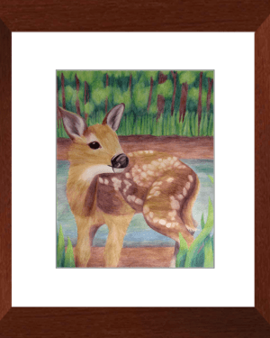 Fawn Framed Prints of Deer Totem Animal Watercolor Pencil Fine Art