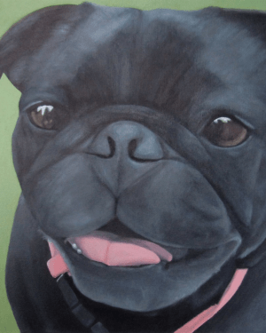 Maya – Professional Prints of Black Pug Dog Acrylic Paint Fine Art