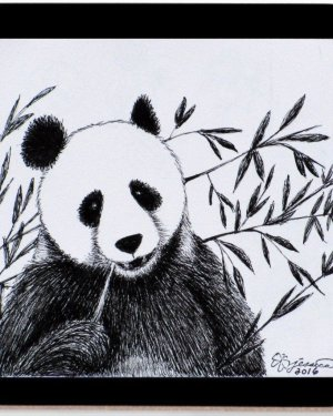 Coaster - Panda - Coasters Of Marker Fine Art Drawing