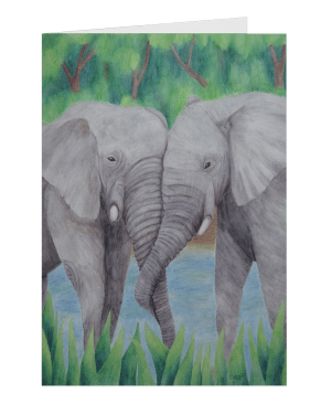 Elephant Couple – Folded Greeting Cards of Aquatic Watercolor Pencil Fine Art