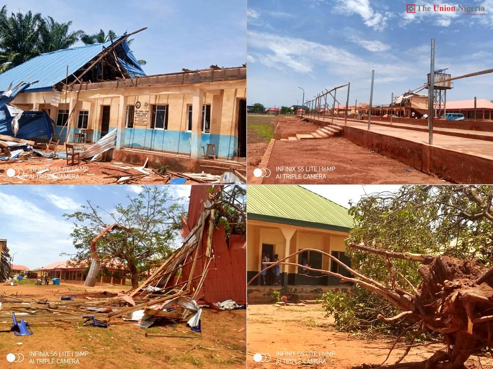 windstorm destroys
