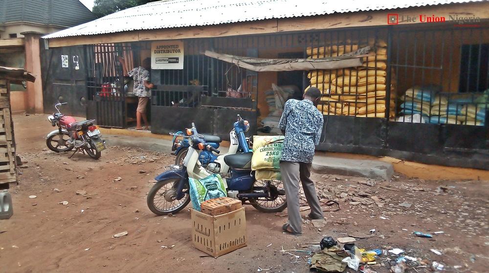 animal feed market in nigeria