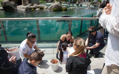 The Uni at the Central Park Zoo with The Drawing Center