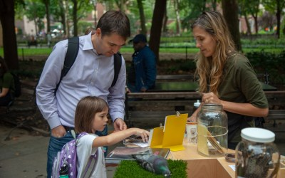 Fall residency launched in Washington Square Park
