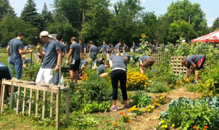 Volunteers in the Community Garden at The University Church.