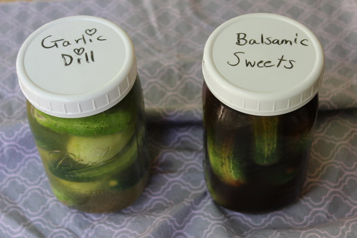 Raw & Easy Paleo Pickles – AIP, Low-FODMAP, Non-Fermented