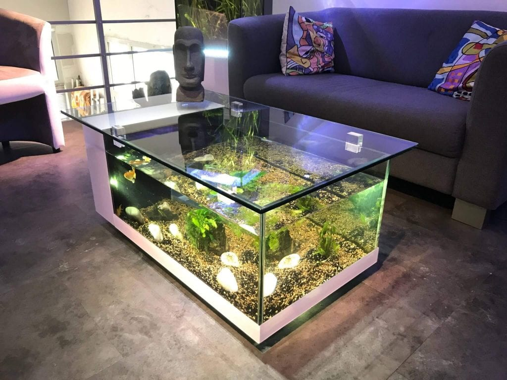 Best-Aquarium-ideas-for-home