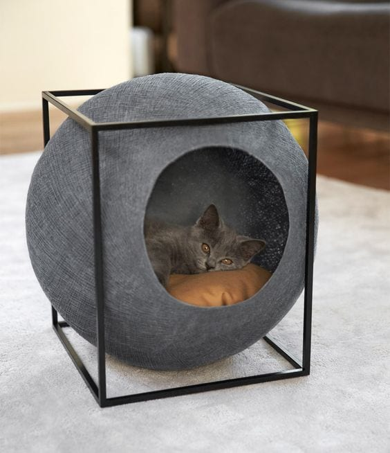 Cute Pet Bed Ideas for Your Cats