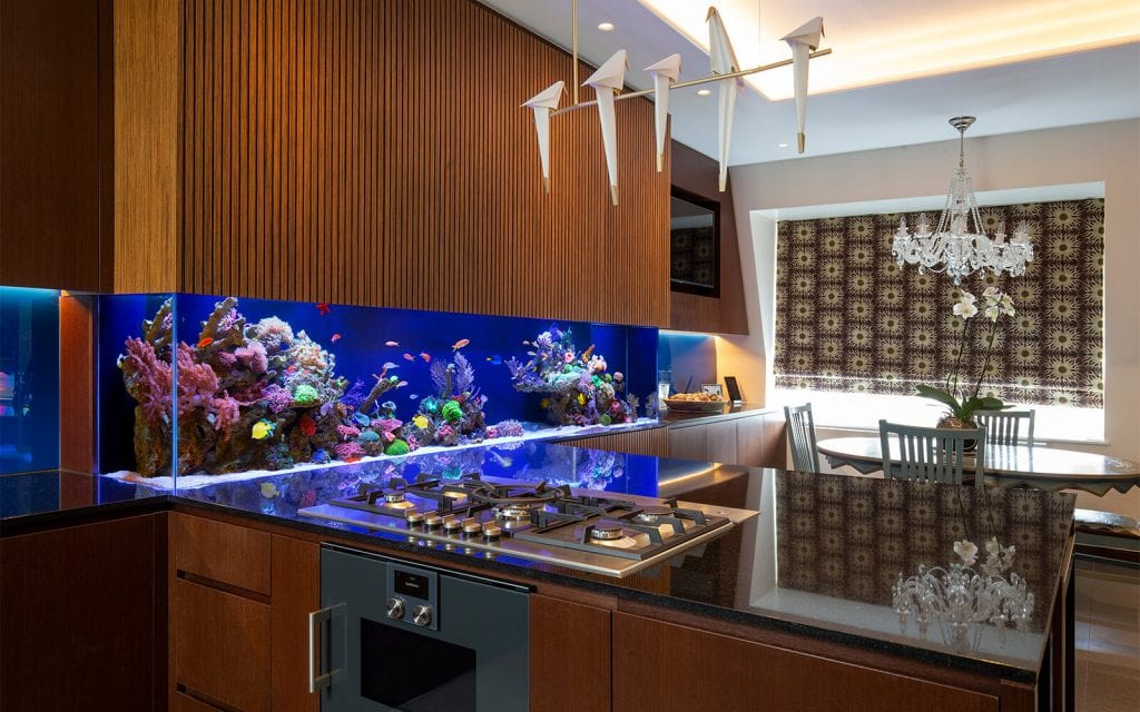 Mesmerizing Home Aquarium Ideas