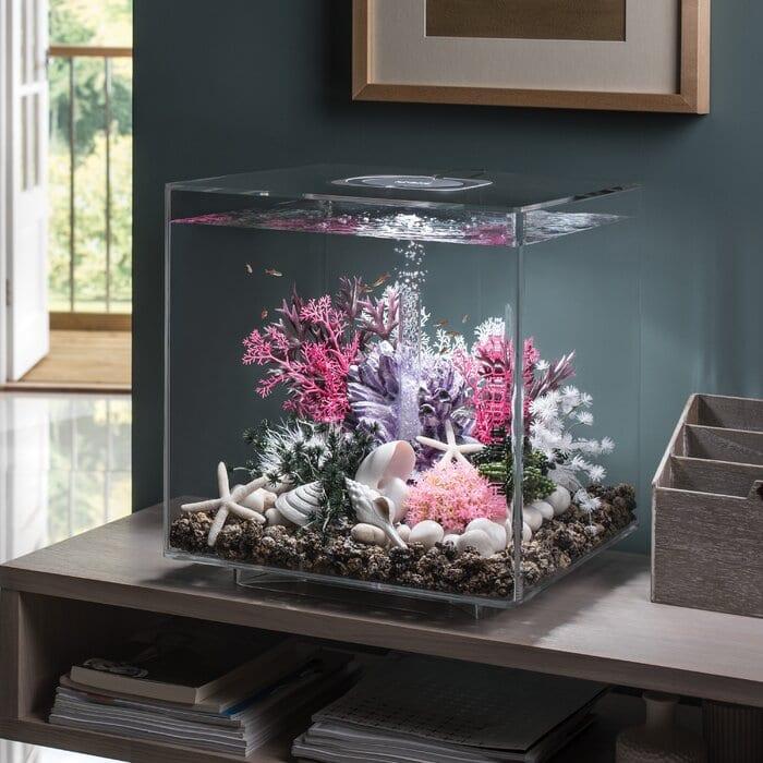 Square Fish Aquarium Ideas for Home